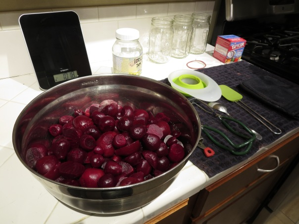 Starting the Canning